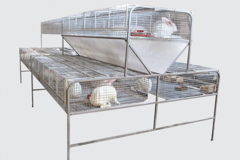 rabbit-farming-equipment-ukraine-4